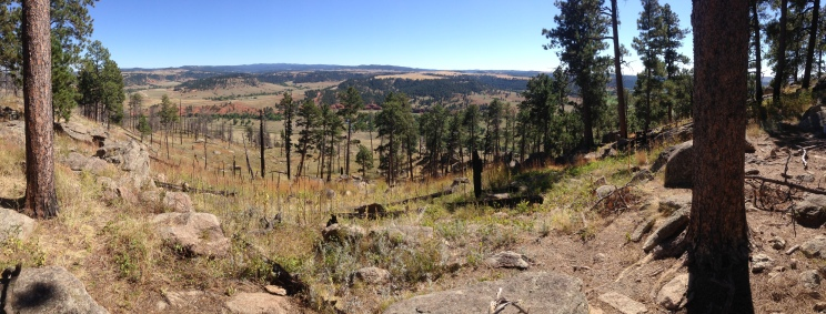 The view from our hike around the base of Devil's Tower