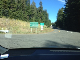 This way to the Avenue of the Giants